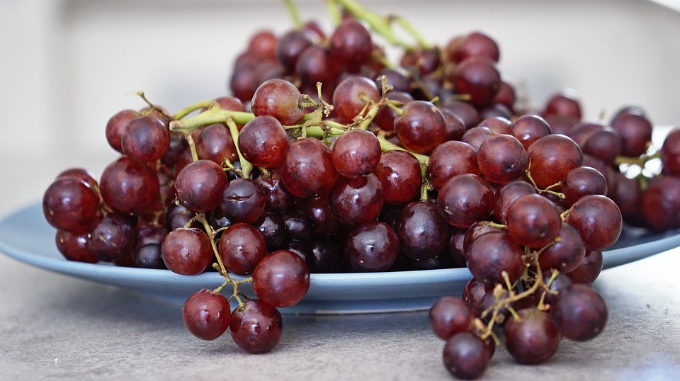 benefícios da uva para a saúde