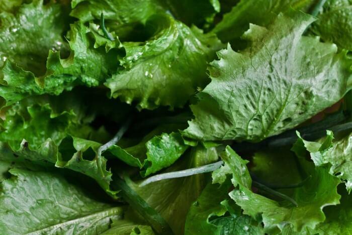 alimentos e suas cores - verde