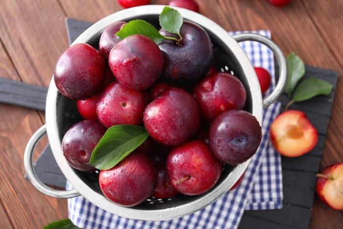 frutas da primavera - ameixa