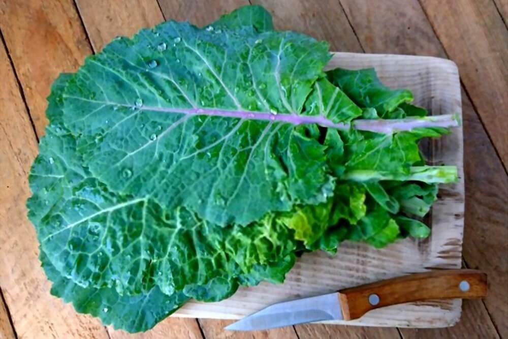 como escolher frutas e verduras - couve